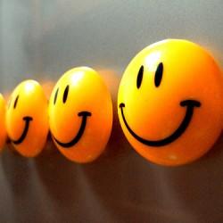 Принцип наибольшего счастья